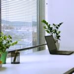 Inkubator Starter - biuro